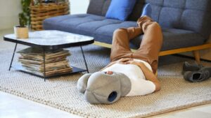 How the Ostrichpillow became a $2.5 million a year business